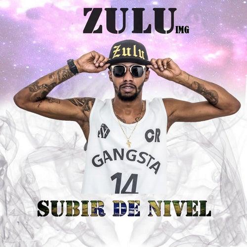 Subir de Nível by Zulu