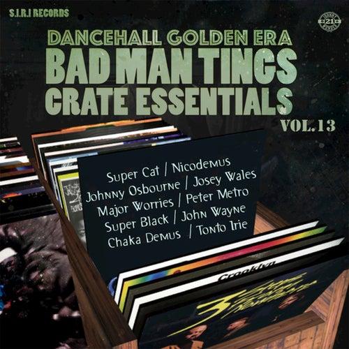 Dancehall Golden Era Vol. 13 by Various Artists