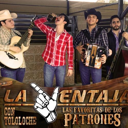 Con Tololoche: Las Favoritas de los Patrones by La Ventaja
