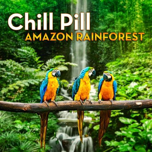 Chill Pill: Amazon Rainforest by Mark Hamilton
