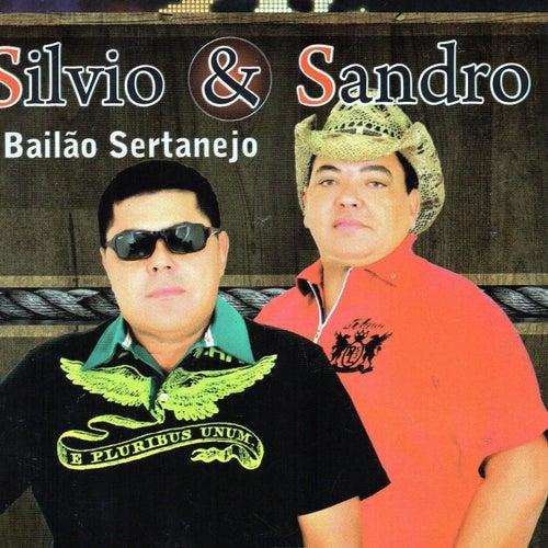 Bailão Sertanejo von Silvio