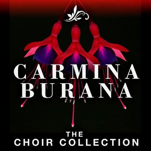 Carmina Burana - The Choir Collection de Riccardo Muti