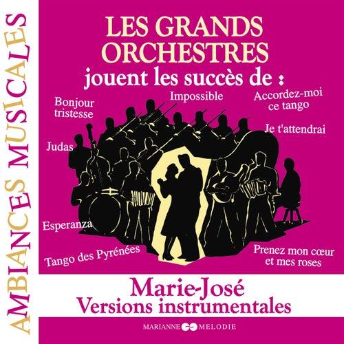 Les grands orchestres jouent les succès de Marie-José (Versions instrumentales) von Various Artists