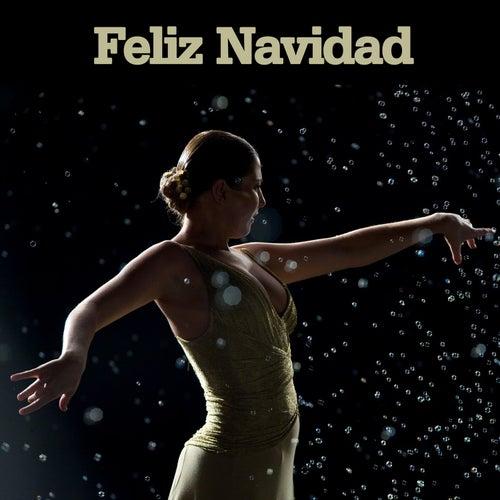 Feliz Navidad by D.R.