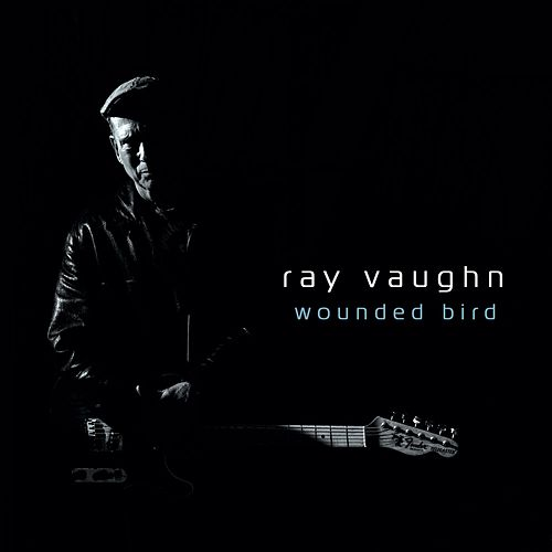 Wounded Bird by Ray Vaughn