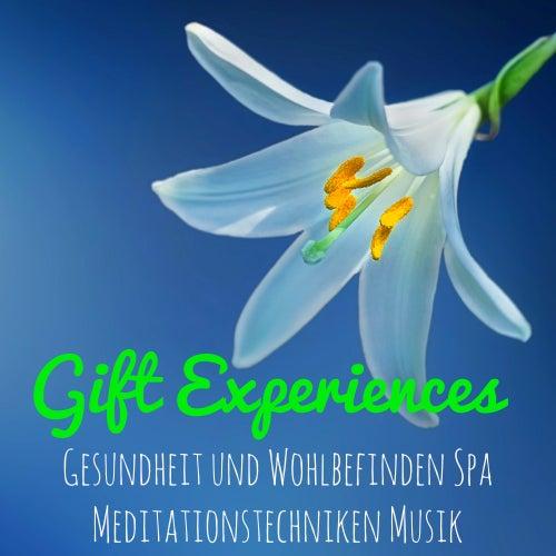 Gift Experiences - Natur Instrumental Easy Listening Entspannende Musik für Gesundheit und Wohlbefinden Spa Meditationstechniken Musik von Deep Sleep Music Delta Binaural