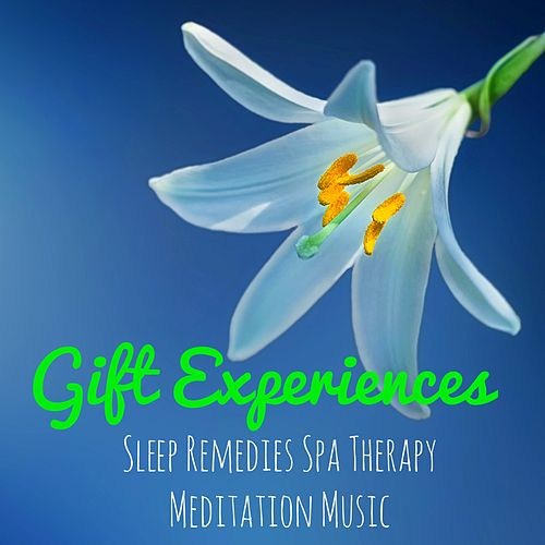 Gift Experiences - Instrumental Natural Relaxing Easy Listening Sounds for Sleep Remedies Spa Therapy Meditation Time Music von Deep Sleep Music Delta Binaural