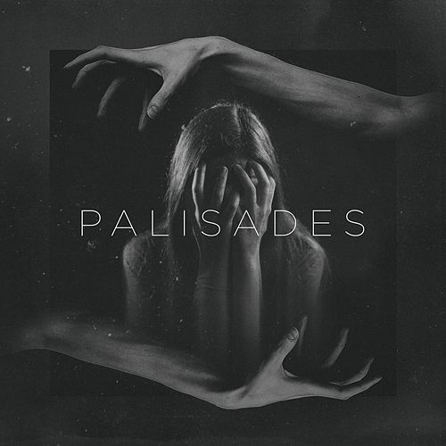 Aggression by Palisades
