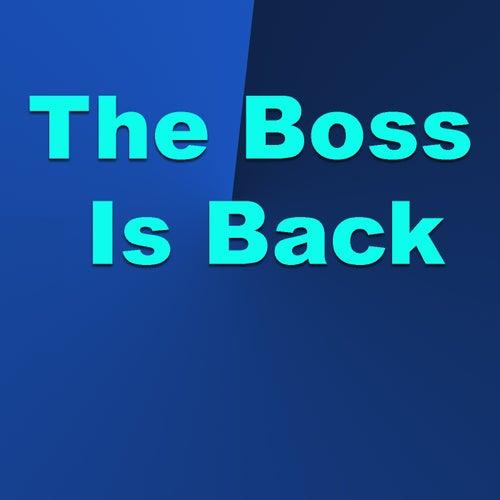 The Boss Is Back de Various Artists