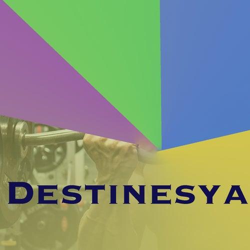 Destinesya de Various Artists