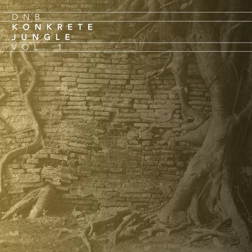 Dnb Konkrete Jungle, Vol. 1 de Various Artists