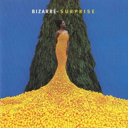 Surprise by Bizarre Inc.