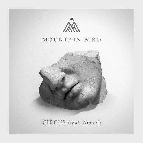 Circus de Mountain Bird