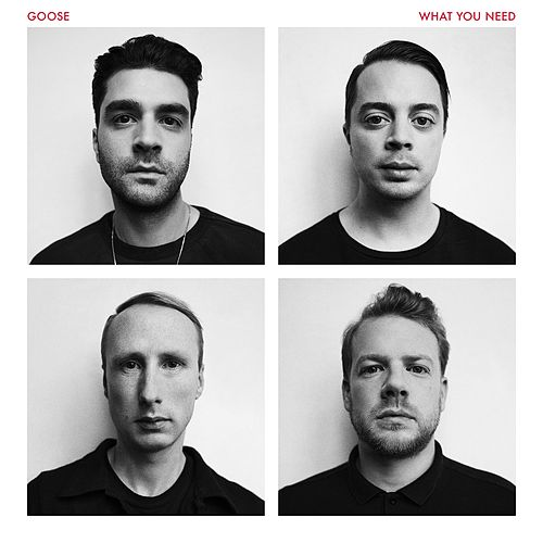What You Need by Goose