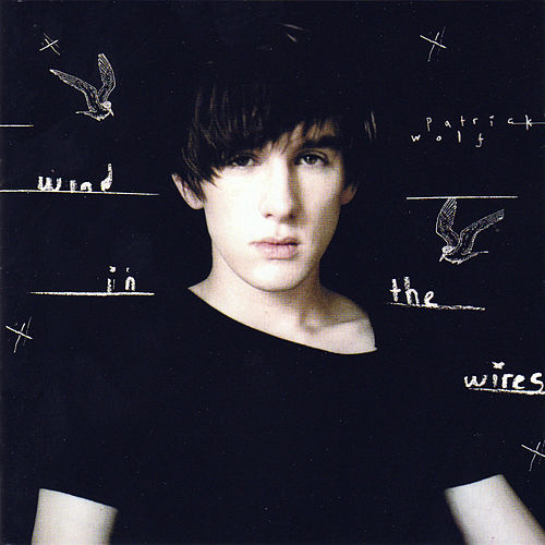 Wind in the Wires de Patrick Wolf
