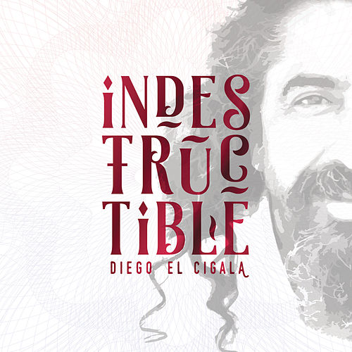 Indestructible: Track by Track von Diego El Cigala