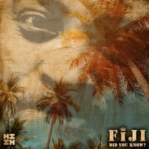 Did You Know? von Fiji