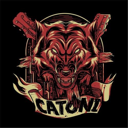 Wolf by Catoni