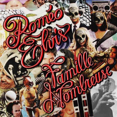 Famille Nombreuse de Roméo Elvis