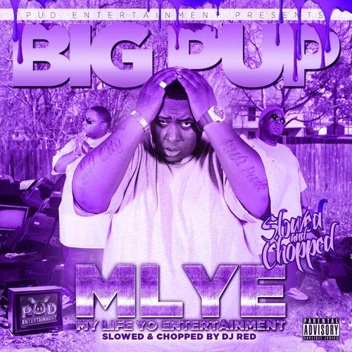 My Life Yo Entertainment (Slowed & Chopped) de Big Pup