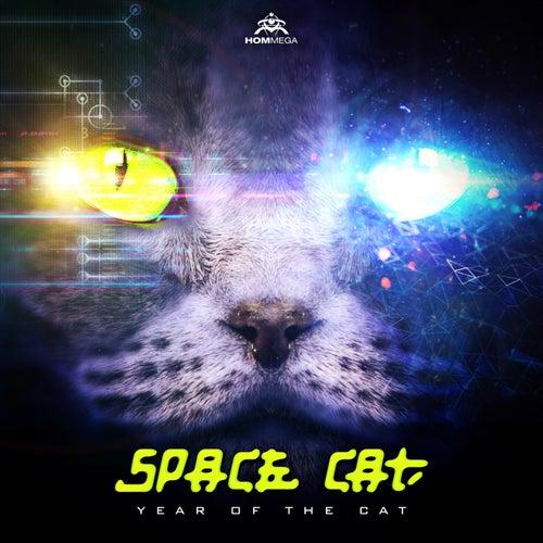 Year of the Cat de Space Cat