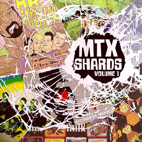 Shards, Vol. 1 de Mr. T Experience