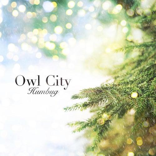 Humbug by Owl City