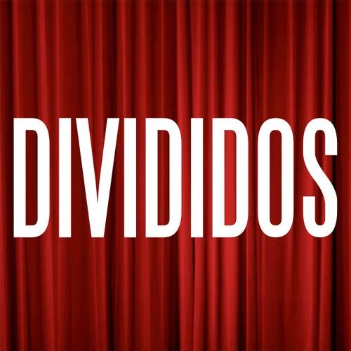 En Vivo en el Teatro Coliseo de Divididos