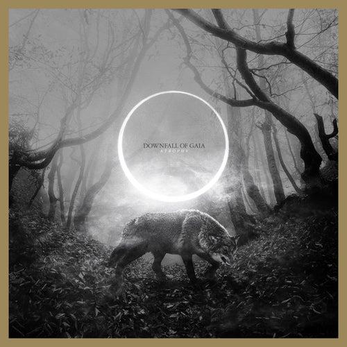 Ephemerol by Downfall of Gaia