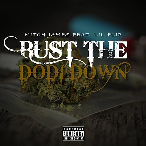 Bust the Dodi Down (feat. Lil Flip) by Mitch James