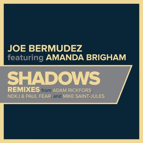 Shadows de Joe Bermudez