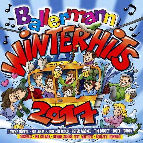 Ballermann Winter Hits, Vol. 2 von Various Artists