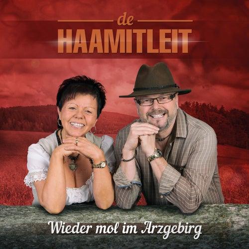 Wieder mol im Arzgebirg von De Haamitleit