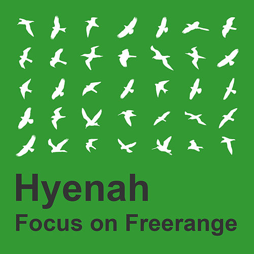 Focus on Freerange: Hyenah de Hyenah