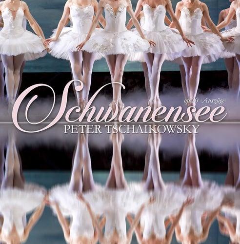 Schwanensee, op. 20 von Ballet Theatre Orchestra