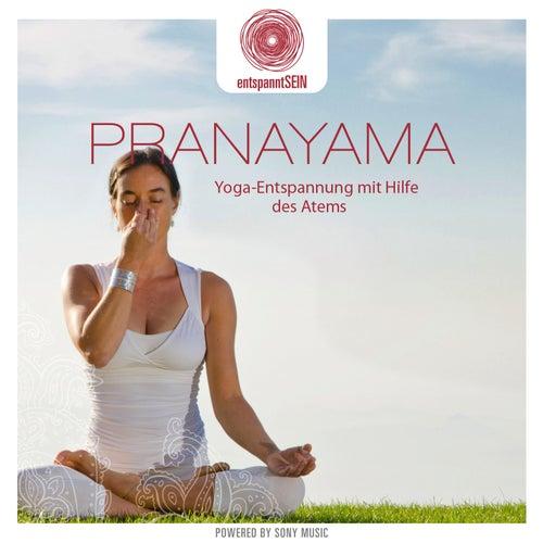 entspanntSEIN - Pranayama (Yoga-Entspannung mit Hilfe des Atems) von Davy Jones