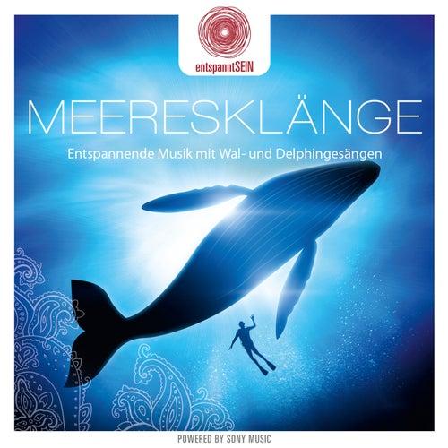 entspanntSEIN - Meeresklänge von Davy Jones