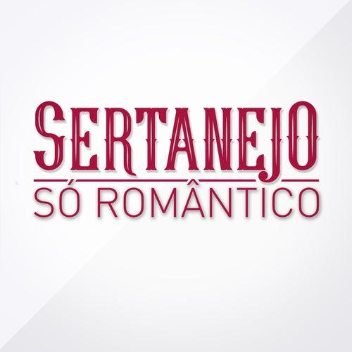 Sertanejo Só Romântico von Various Artists