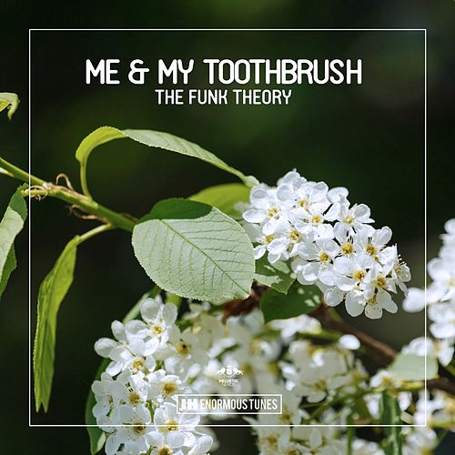 The Funk Theory EP de Me & My Toothbrush