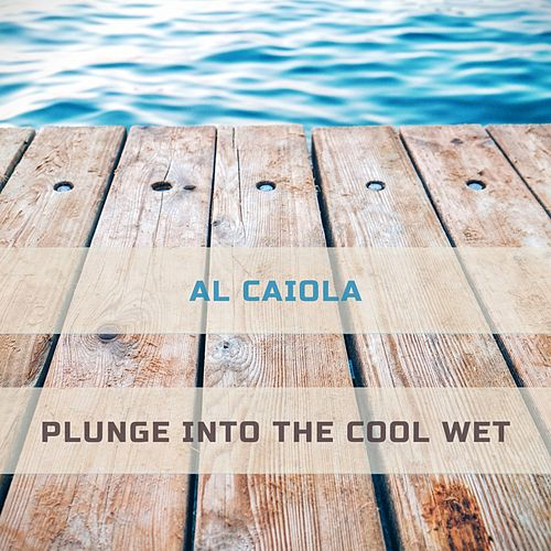 Plunge Into The Cool Wet by Al Caiola