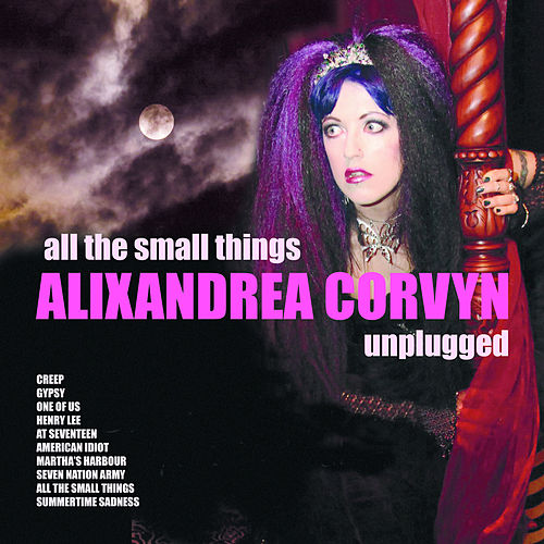 All The Small Things - Alixandrea Corvyn Unplugged by Alixandrea Corvyn