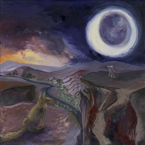 Coyote Hours de Nathan Veshecco