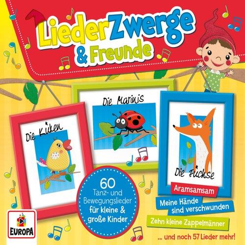 Liederzwerge und Freunde (3er-Box) von Various Artists