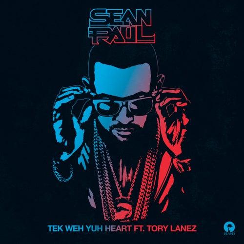 Tek Weh Yuh Heart de Sean Paul