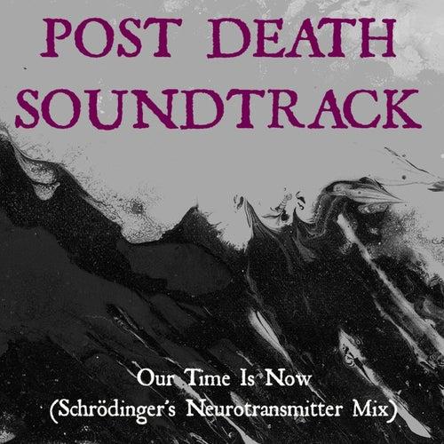 Our Time Is Now (Schrödinger's Neurotransmitter Mix) von Post Death Soundtrack