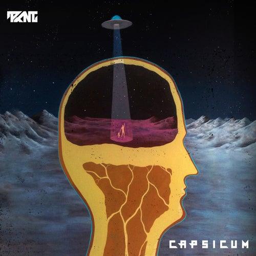 Capsicum by Pknt