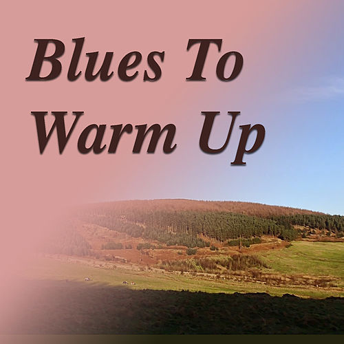 Blues To Warm You Up de Various Artists