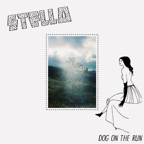 Dog on the Run von Stello