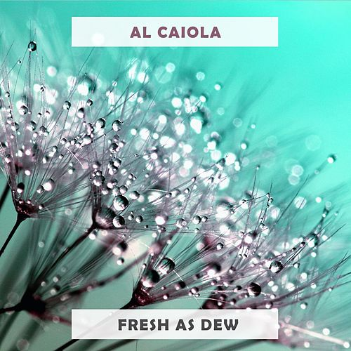 Fresh As Dew by Al Caiola