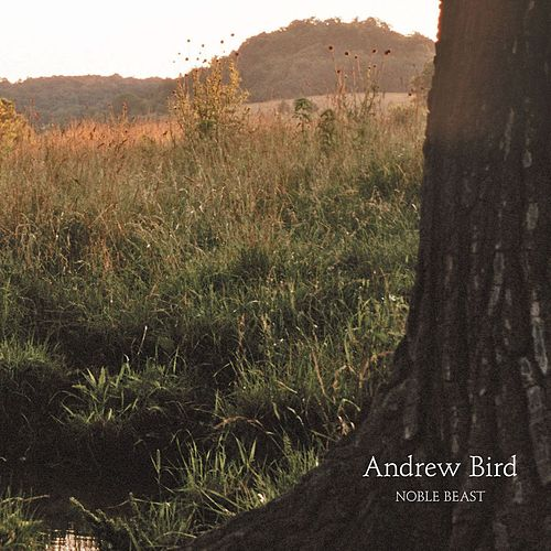 Noble Beast de Andrew Bird
